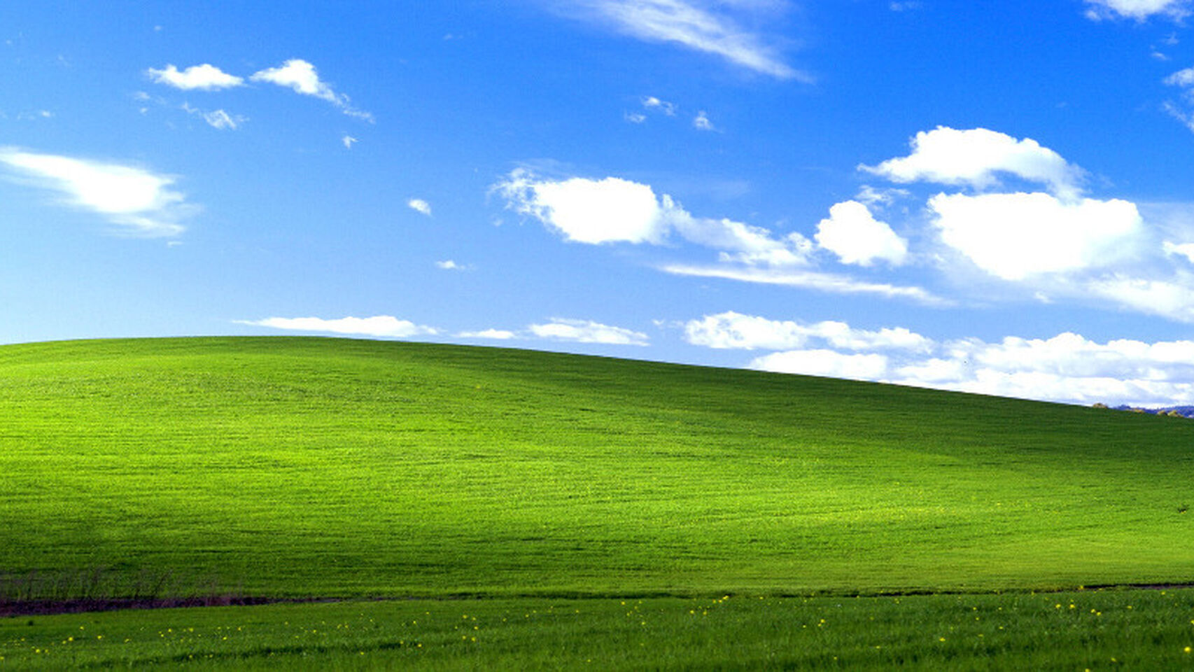 wallpaper windows xp